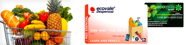 banner-ecovale-red-esencial