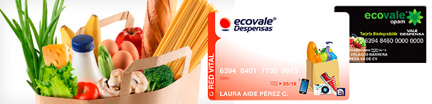 banner-ecovale-red-vital